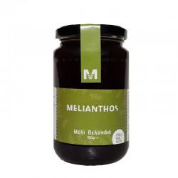 Μελι Βελανιδιά 450gr