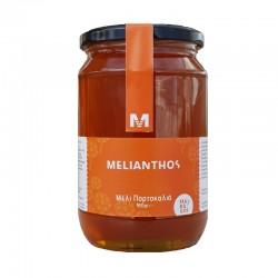 Μέλι Πορτοκαλιά 950gr