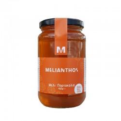 Μέλι Πορτοκαλιά 450gr