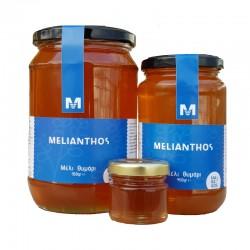 (ΔΕΙΓΜΑ) Μέλι Θυμάρι 45gr