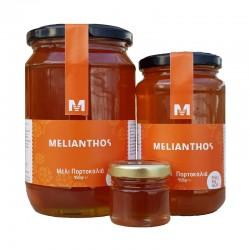 (ΔΕΙΓΜΑ) Μέλι Πορτοκαλιά 45gr